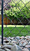 Link fence in back garden